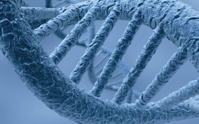 Обнаружены гены, активизирующиеся после смерти