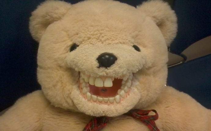 Ожившего плюшевого медведя засняли на камеру