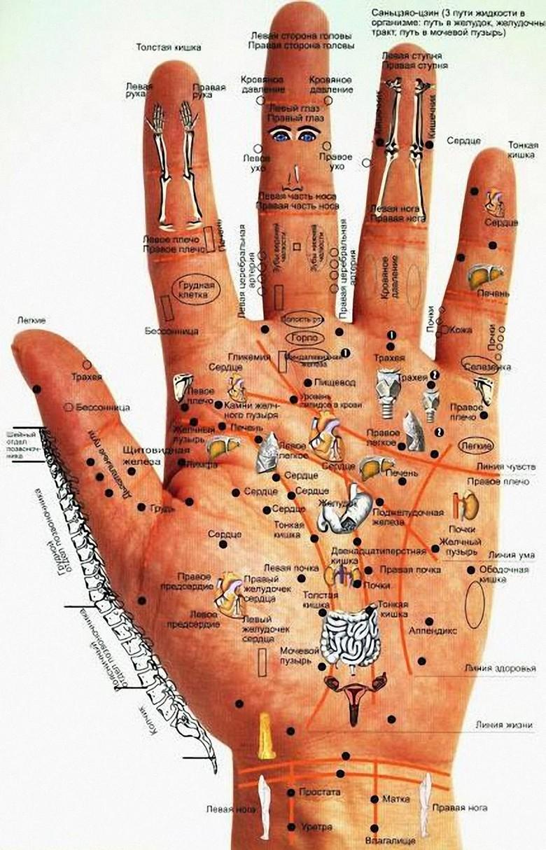 Болезней легко избежать с помощью ладоней и пальцев рук (2 фото + видео)
