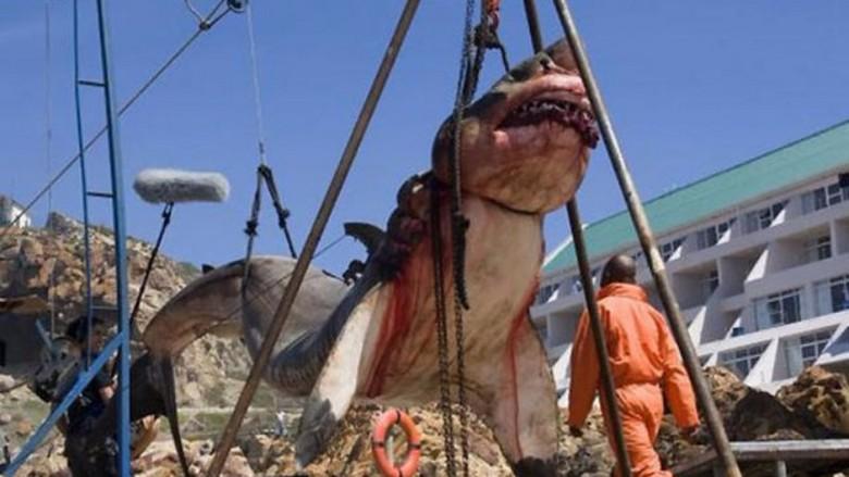 В Пакистане поймана доисторическая акула в пятнадцать тонн