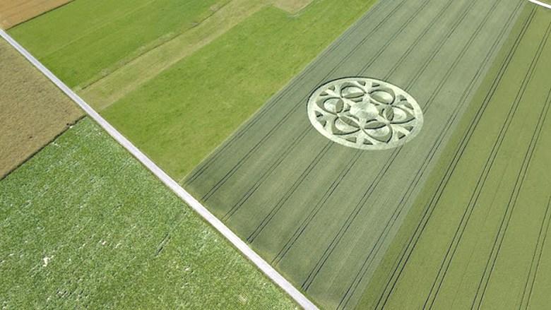 Теперь загадочный рисунок на зерновом поле появился в Швейцарии