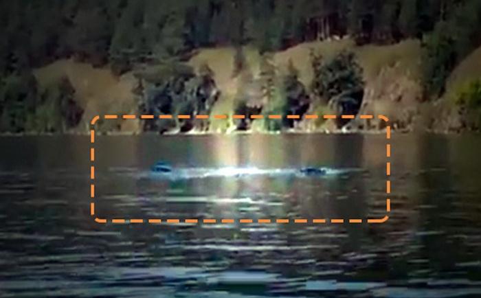 Черный змей гигантских размеров замечен в уральском озере (2 фото + видео)