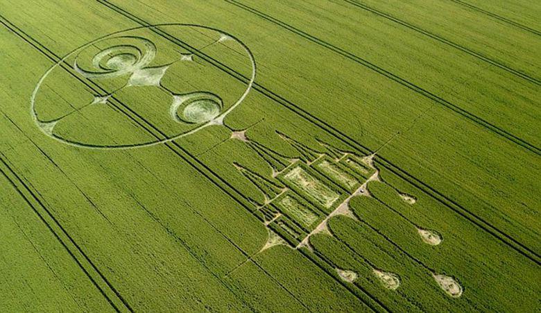 Кто же все-таки создает круги на полях?
