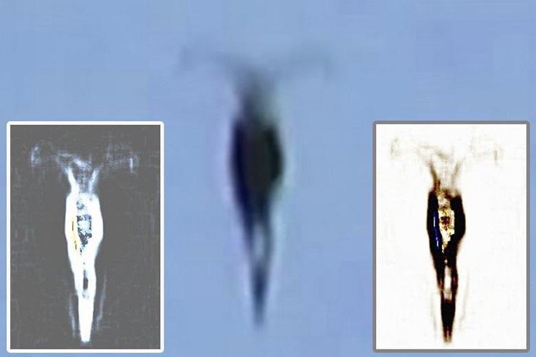 Гражданин Нэшвилла увидел внебе «рогатого инопланетянина»