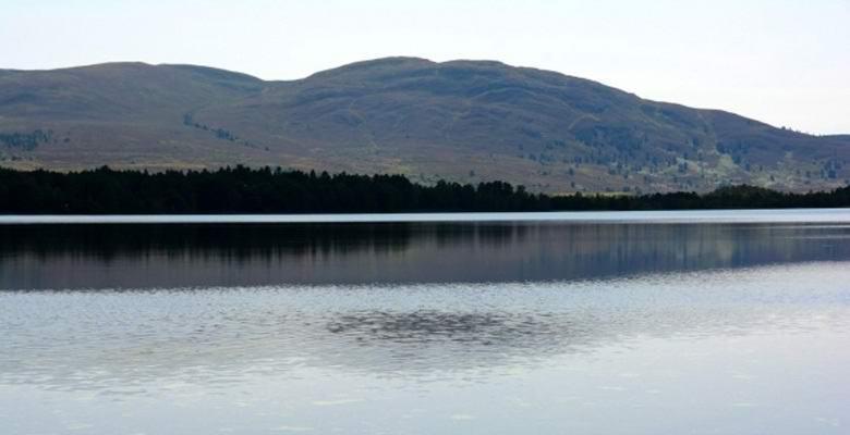 В американском озере опять заметили загадочное чудище (5 фото + видео)