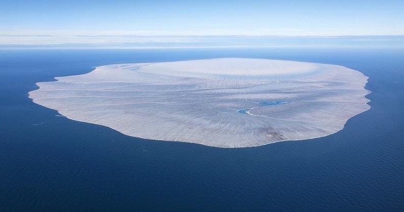 Огромный «плот» из пемзы дрейфует в Тихом океане