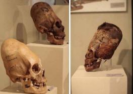 Доказано - жившие 3.000 лет назад в Перу паракасцы не были людьми
