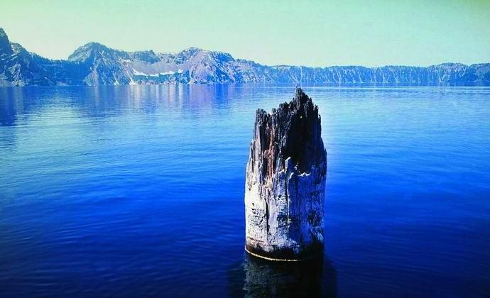 Загадка удивительного бревна в озере Крейтер