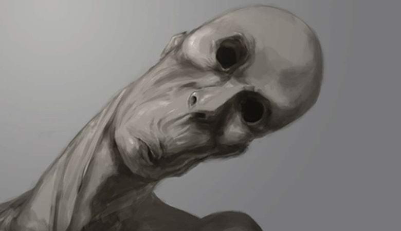 Худое гуманоидное существо запечатлели в ночном лесу Орегона