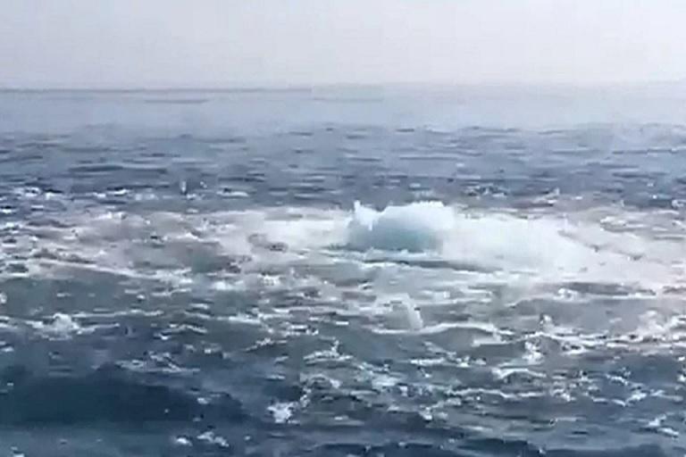 Странное явление у берегов Сочи запечатлели на видео отдыхающие