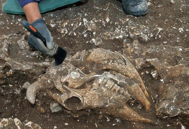 Археологи обнаружили странное «святилище» железного века в Англии