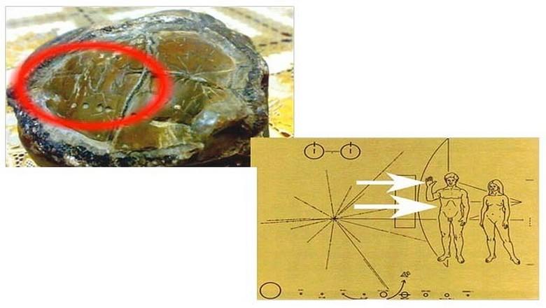 Артефакт в сотни тысяч лет из Индонезии - еще одна неразрешимая загадка
