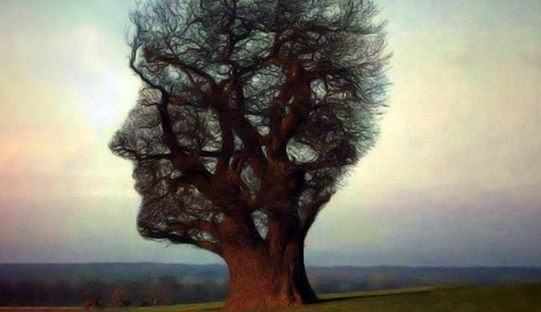 Мистическое дерево приняло вид убитой женщины