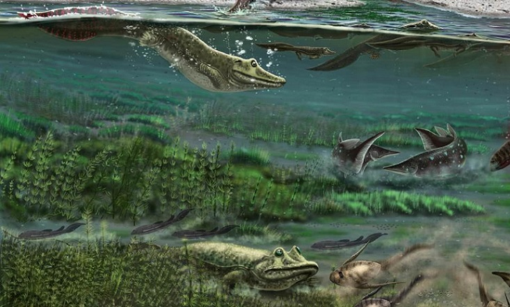 Ученые опровергли прежнее представление об эволюции