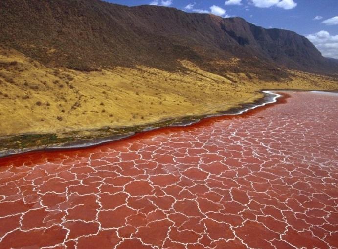 Озеро Натрон - одно из самых горячих и соленых на Земле