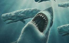 Акула Мегалодон не вымерла