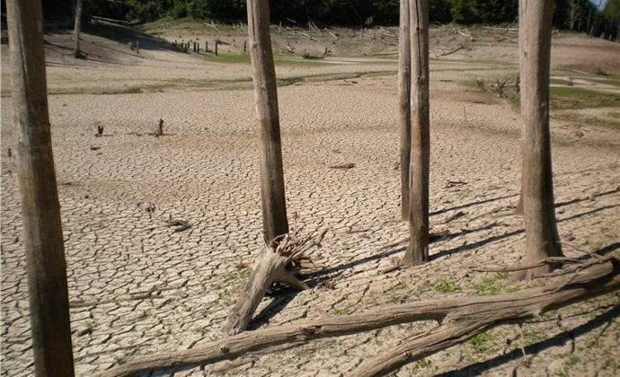 Озеро мертвых деревьев под Казанью