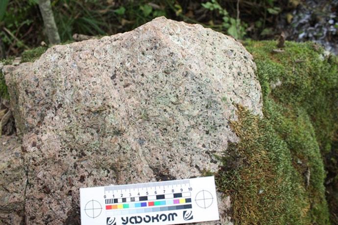 Кричащий и движущийся камень в белорусском лесу