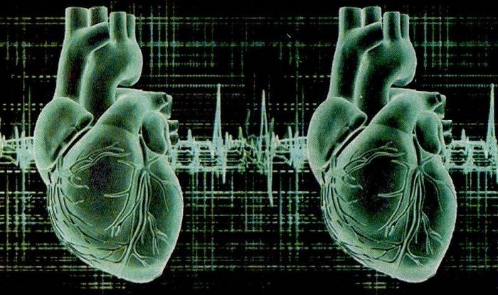 Зарождение новой расы - обладающие двумя сердцами