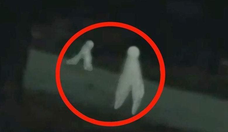 Ночные ползуны Фресно дважды попали на видео