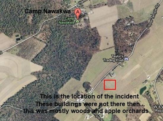 Злые сущности яблоневого сада чуть не погубили девочку (5 фото)