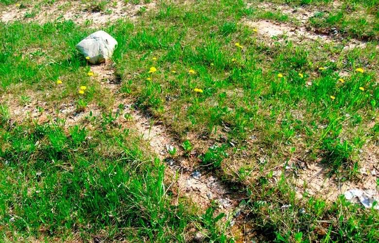 В Беларуси столкнулись с феноменом движущихся камней