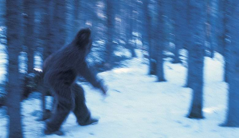 В Канаде запечатлели крупного снежного человека