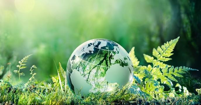 Катастрофические изменения в биосфере Земли обнаружили ученые