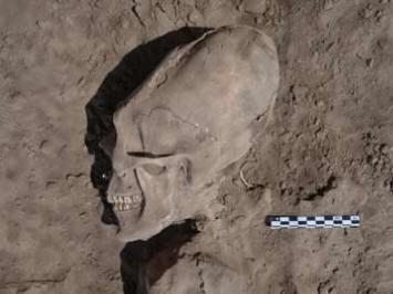 Останки древних существ с вытянутыми черепами обнаружены в Мексике