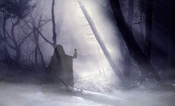 Найдено фото жуткого призрака в лесу