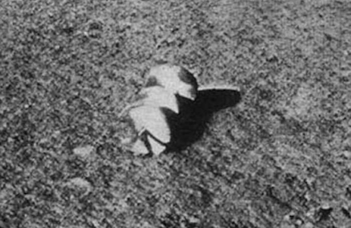 Загадочные снимки советского космического аппарата Луна-13
