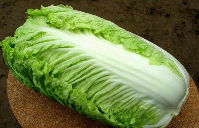 Зеленые салаты омолаживают мозг