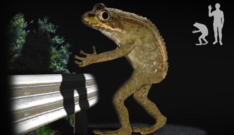 Ловлэндская лягушка – один из самых необычных и загадочных монстров мира