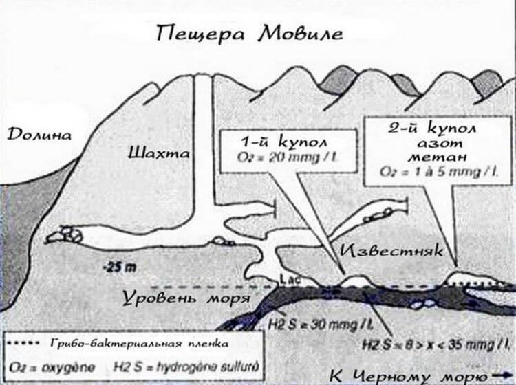 Почему румынская пещера Мовиле считается ядовитой?